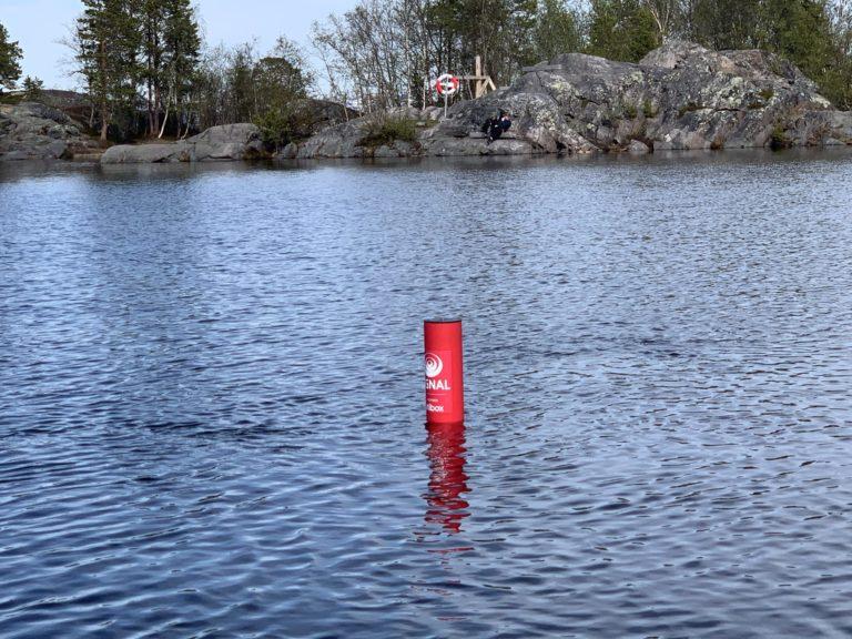 Rødt rør, også kalt Badetassen flyter over vannflaten i Finnmark