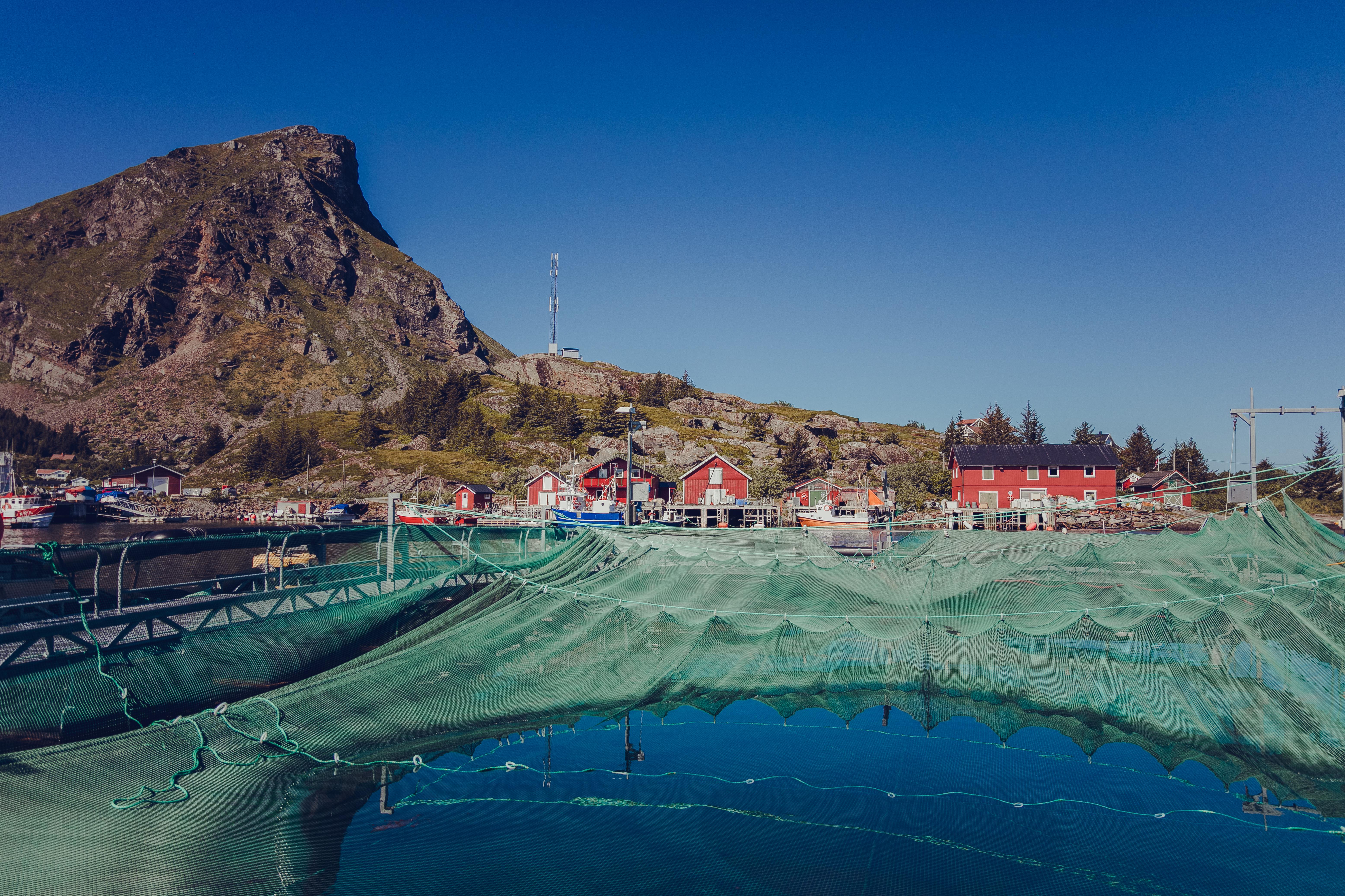 Fiskeoppdrett fra Nova Sea på Lovund