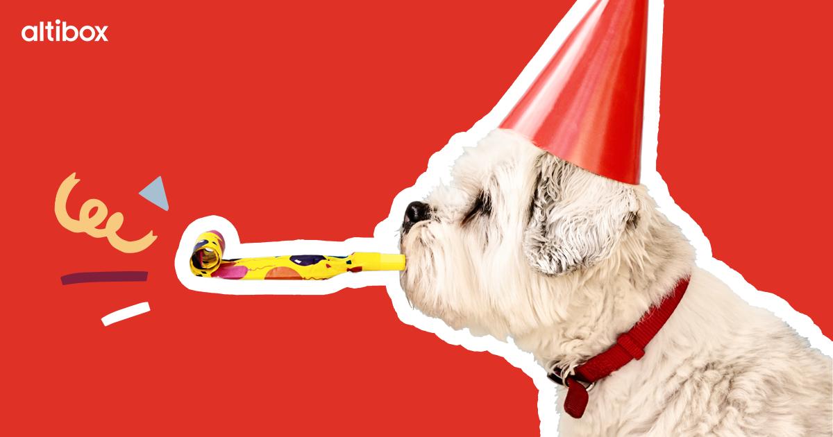 Hund med rød partyhatt blåser konfetti